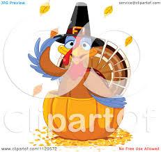 cartoon images of thanksgiving turkey cartoon of a cute thanksgiving turkey bird pilgrim in a pumpkin