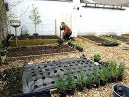 shade vegetable garden shade vegetable gardening ideas u2013 piccha