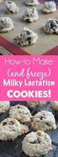 Where To Buy Lactation Cookies Calling All Nursing Moms Milky Monster Cookies Dash Of Evans