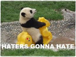 Panda Mascara Meme - mascara meme