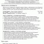 Retail Resumes Examples by Resume Examples Templates How To Make Retail Resume Template For