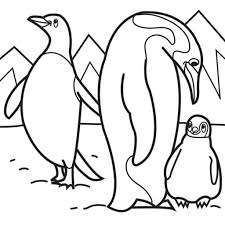 tundra animals coloring pages