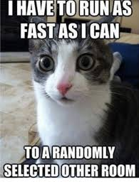 Fast Internet Meme - 25 best memes about as fast as i can as fast as i can memes