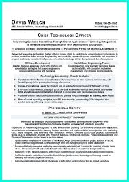 Cfo Resume Examples by 17 Best Business Resume Samples Images On Pinterest Business
