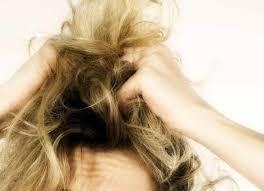 alimenti fanno bene ai capelli alimenti fanno crescere i capelli o favoriscono la riscrescita