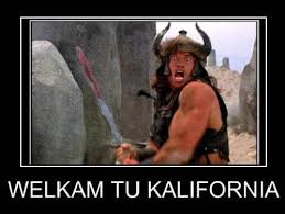 Schwarzenegger Meme - the governator of killerfornia