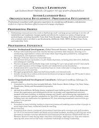 Management Consulting Resume Example Of A Consultant Resume