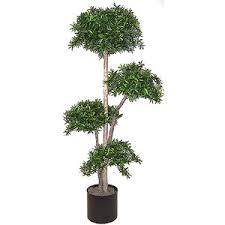 8 silk podocarpus topiary silk trees artificial pa