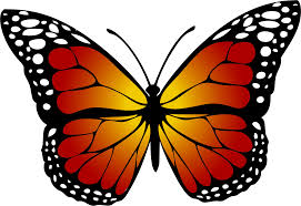monarch butterfly clipart