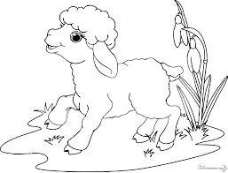 116 dessins de coloriage mouton à imprimer