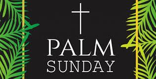 palm for palm sunday palm sunday in 2018 2019 when where why how is celebrated