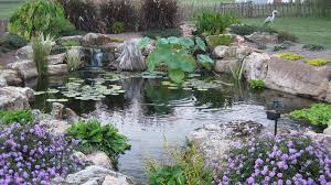 backyard pond projects mi kalamazoo grand rapids paw paw living