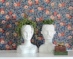 Face Planter Vase Vs Planter A Ceramic Head Struggle Wills Casawills Casa