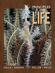 principles of life 1st edition textbook biology