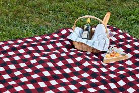 Outdoor Picnic Rug August Grove Plaid Outdoor Picnic Blanket Reviews Wayfair