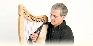 what size l harp do i need beginner s guide to harps dusty strings