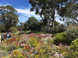 Kings Park Botanic Garden by Kingspark Hashtag On Twitter