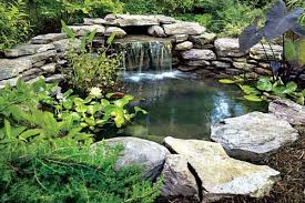 Backyard Ponds Ideas Beautiful Backyard Pond Ideas With Waterfall For Intended Ponds