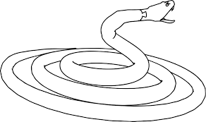corn snake coloring page printable pages click the to view version
