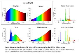 fluorescent light natural sunlight natural light versus artificial light sunlight inside
