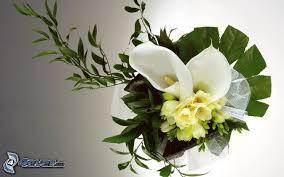 fleurs blanches mariage bouquet de mariage