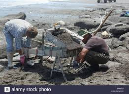 greymouth new zealand circa 2006 men prepare a sluice to work