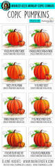 279 best diy copic markers images on pinterest copic colors