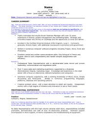 resume computer skills sample professional summary resume examples for software developer free resume computer skills objectives for shopgrat leadership sample skill professional summary resume format download pdf