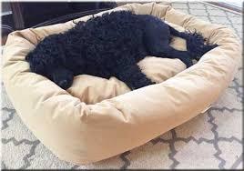 luxury dog beds pet beds designer fabrics luxury large dog beds