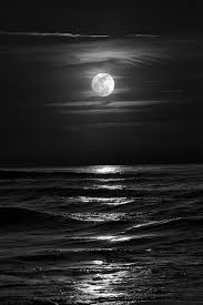 ruled by the moon and live neither in the sea nor on land but in