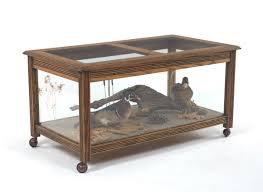custom made coffee table with display taxidermy wood ducks aix