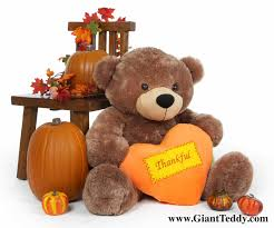 teddy teddy thanksgiving gifts