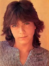 looking for the shag haircut of the70 s david cassidy hairstyles classic men s shag haircuts cool