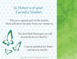 sympathy cards for pets pet sympathy