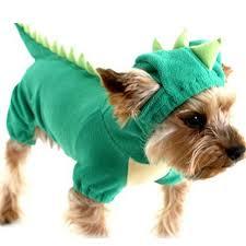 dinosaur dog pet halloween costume xs s m l xl pet dogs green coat