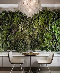 Interior Plant Wall 264 Best Plants Vertical Gardening Images On Pinterest