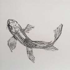 koi fish drawing sketch on instagram