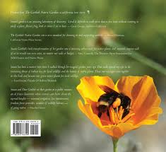 list of california native plants the gottlieb native garden a california love story mallory smith