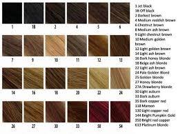 nice n easy hair color chart weave hair color chart photosgratisylegal