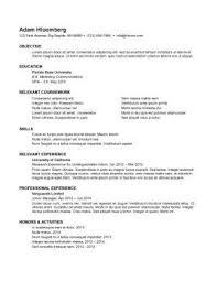 College Student Internship Resume Sample Resume For Internship Resume Templates
