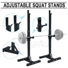Everlast Olympic Weight Bench Squat Rack Design Features Golds Gym Xrs 20 Olympic Bench Olympic