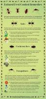 Very Small Ants In Bathroom Best 25 Ant Exterminator Ideas On Pinterest Ants In House