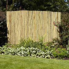 decorating appealing bamboo fence roll for inspiring backyard
