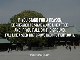tree quotes inspiration boost