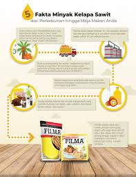 Minyak Kelapa Di Supermarket 5 fakta tentang minyak kelapa sawit dari perkebunan hingga ke meja