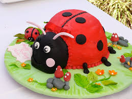 ladybug birthday cake ladybug birthday cake photo by meg fred cake by sybil flickr