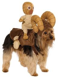 Dog Halloween Costumes Kids Star Wars Costumes Dogs Turns Pet Bantha