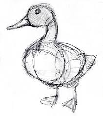 best 25 duck drawing ideas on pinterest baby cartoon disney