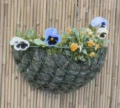 standard wire wall basket planter 35cm 2 49
