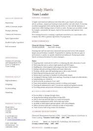 Team Leader Resume Format Bpo Leadership Resume Template Sample Rimouskois Job Resumes